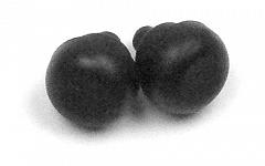 Amortizer škarij B1000L